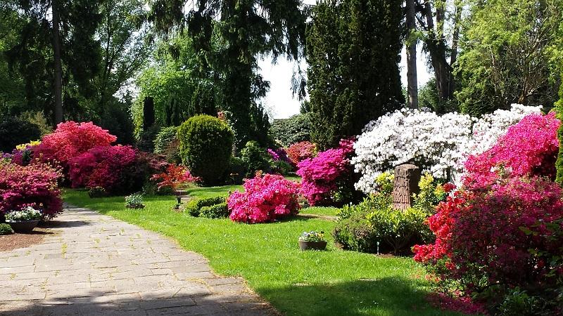Friedhof Heiligenhaus grün