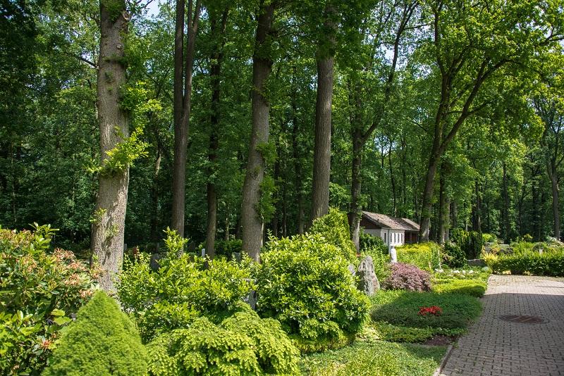 Friedhof Hochdahl Natur