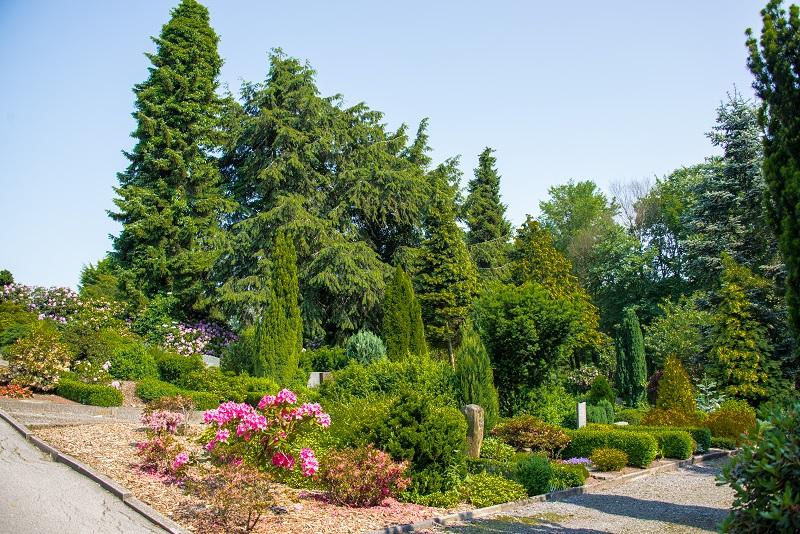 Friedhof Tönisheide Gräber