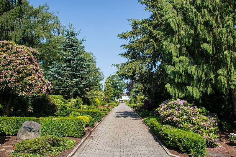 Friedhof Tönisheide Wege